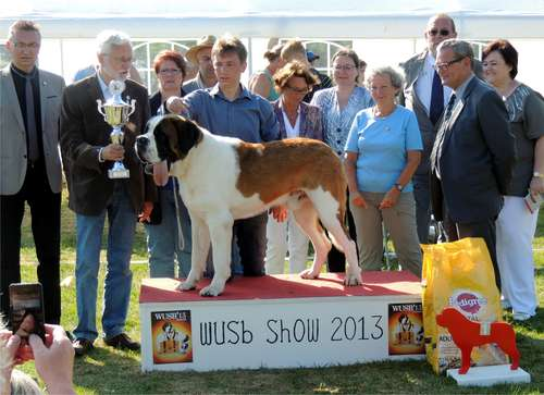 Lord WUSB 2013 BEST IN SHOW